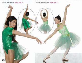 339d0e08c95d ... Spring summer petticoat floral 1950 s watermelon print dance recital  competition costume. Fantasy fairy bug dance competition recital costume  green mint ...